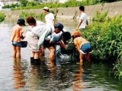 安心して安間川で遊びたい