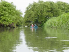 安間川の下流