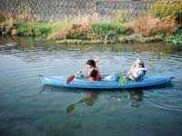 安間川でカヌーにのれるなんて